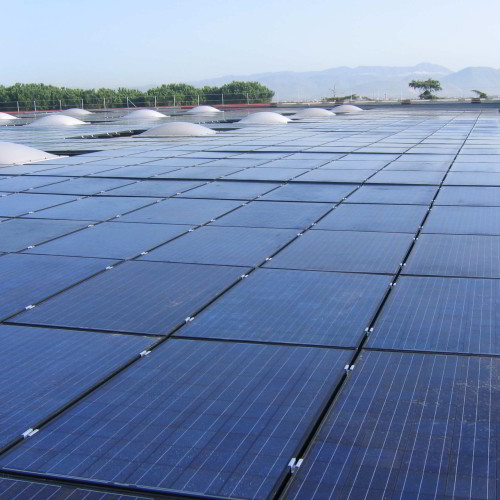 PHOTOVOLTAIC PLANT (POWER:  995.72 kW)